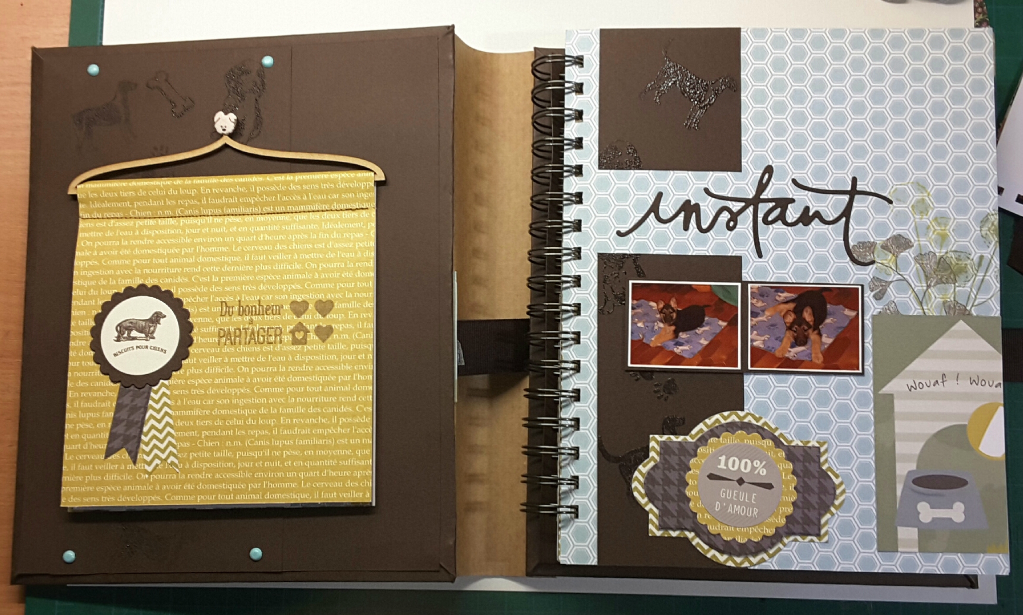 album scrapbooking 100 pages