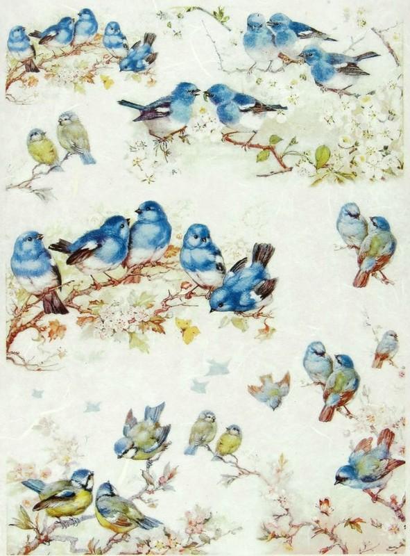 papier scrapbooking oiseau
