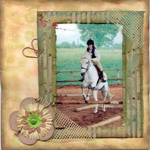 scrapbooking equitation