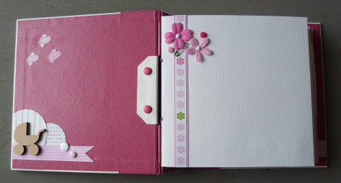 scrapbooking livre de naissance